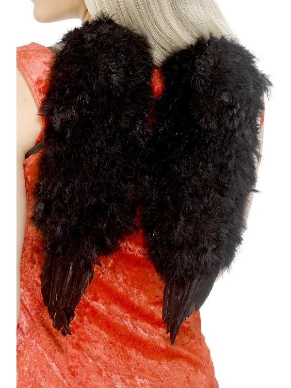 Zwarte Veren Vleugels Engelenvleugels