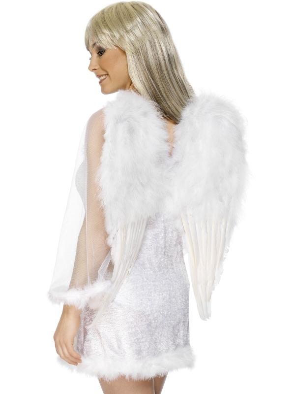 Engel Vleugels met Veertjes