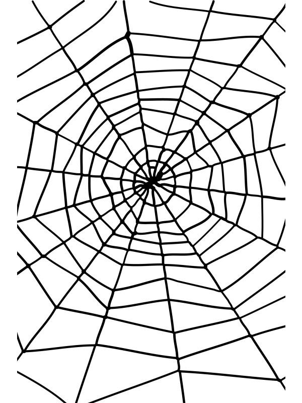 Zwart Spinnenweb met Spin Halloween Versiering